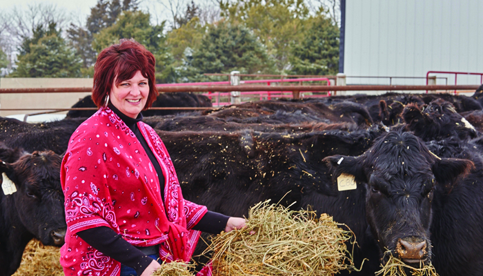 Susan Weber feeds hay to buttercup cow